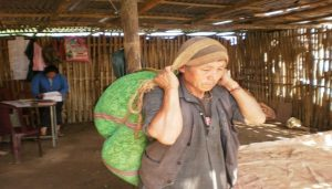 Farmer carrying the green leaves in Nylon bags provided by Gorka Tea Estate