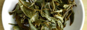 Glendale Tea Estate Spring Twirl Infusion