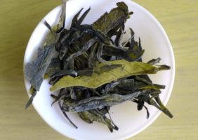 Tea Studio Long Jing 1