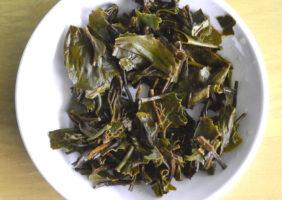 Tea Studio Nilgiri Frost Infusion