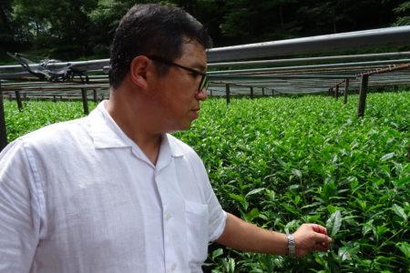 Mr. Kiya In His Field