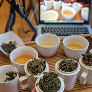 Being Tea Online Classes