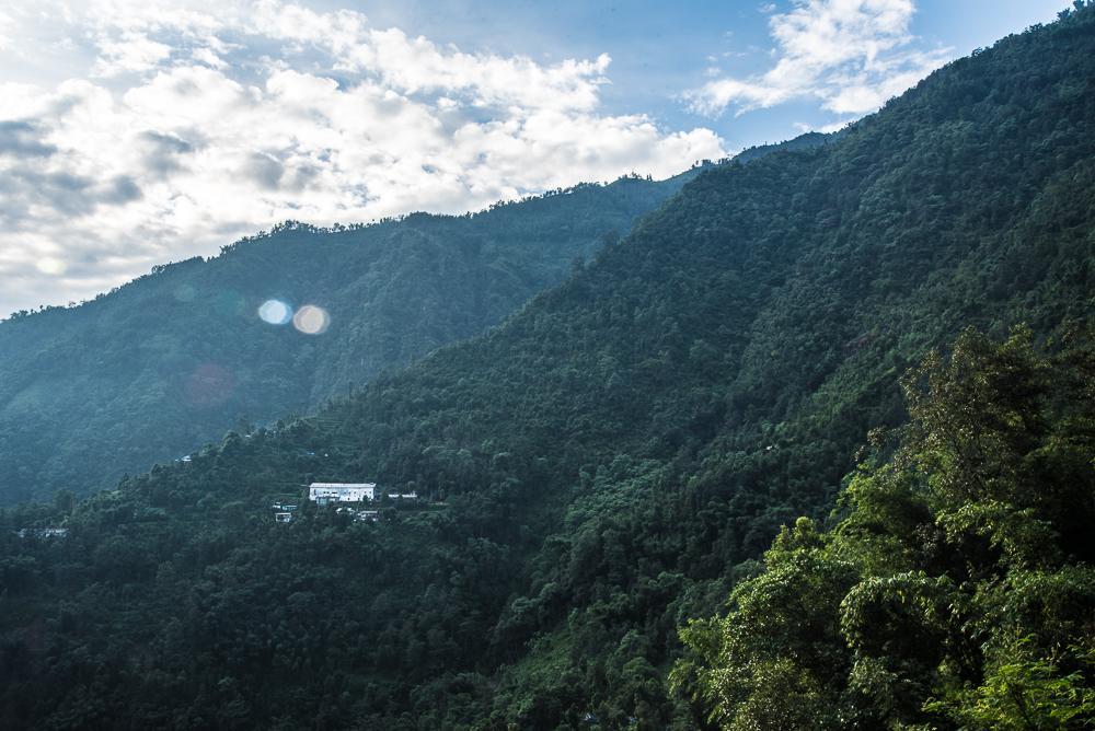 Kanchanjangha Tea estate