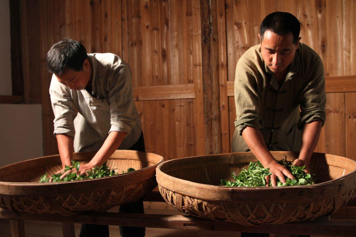 Handmaking Tanyang Gongfu Black Tea